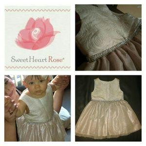 Sweet Heart Rose Jacquard Sparkle Mesh Dress